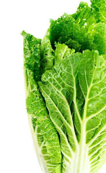 Prehrana in zdravje
