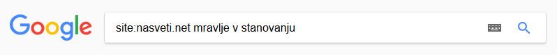 Google - iskanje znotraj spletne strani